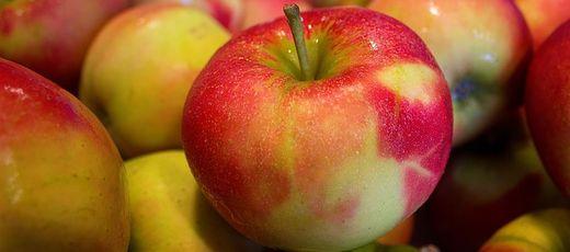 Informacja na temat możliwości bezpłatnego otrzymania owoców i warzyw